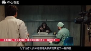 4分钟看《猩球崛起》凯撒的成长史,成为所有猿族的首领!