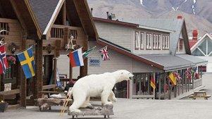 不准生孩子也不准死亡,这是个北极熊比人还多的童话小镇!