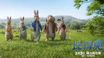 人兔大作战全球最火红兔子跃上大银幕《比得兔》曝全新国际预告