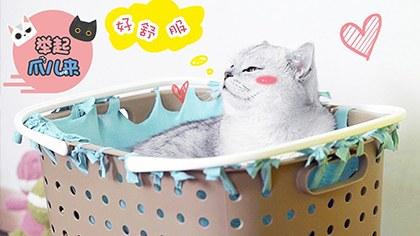 简单又方便,收纳筐猫咪吊床,让主子也能舒服起来!