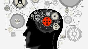 一个世纪谎言:我们只用了大脑的10%?