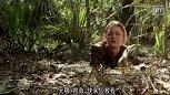 美女不小心掉进沼泽,以为必死无疑,结果发现鳄鱼是自己老爸