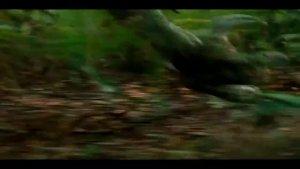 史上最强驯兽师,来看看大神是如何训恐龙的