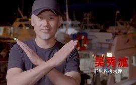 吴秀波前往夏威夷和蝠鲼潜水约会,拒绝消费蝠鲼