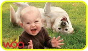 有汪的家里,永远能听到宝宝的笑声