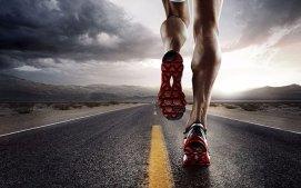 人类:我们不是跑得最快的,但我们是跑得最久的