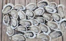 吃一只生蚝,与大海来一次温柔缠绵的法式深吻
