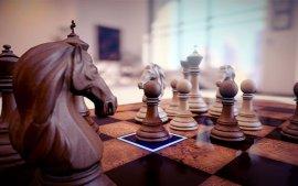 少年,看你骨骼惊奇,不如跟它学下象棋吧!