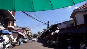 中国人来到老挝的菜市场,见到各种异国蔬菜,秒变好奇宝宝