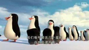 【即将上映】梦工厂动画《马达加斯加的企鹅》终极中文预告