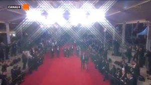 2016戛纳电影节红毯——朴赞郁《小姐》主创人员