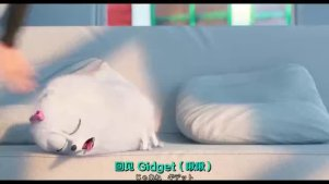 小黄人班底新作《pet爱宠大机密》日版预告片
