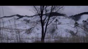 【剪辑】挪威的森林 讲讲故事