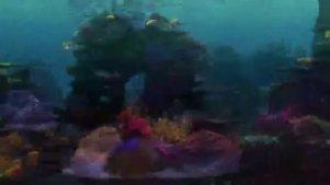 最新的【海底总动员2】预告来了!