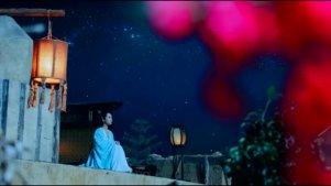 杨紫/陆雪琪生贺,是月流光