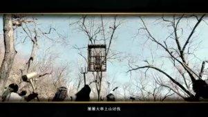 大电影之没落神族·贰(幻城兄弟线自制,cp向)