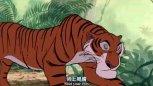 森林之王 蟒蛇为救狼孩与老虎斗智斗勇