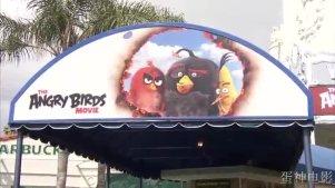 万众贺小鸟!《愤怒的小鸟》 电影世界首映红毯现场