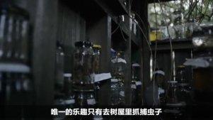 【熊猫】一部有违伦理的爱情片